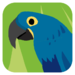 Animal Colours - Blue (Interactive animal flashcards for babies and yo